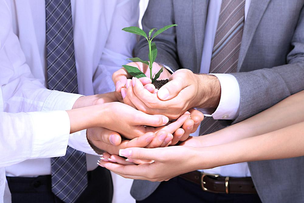 Ein geeignetes Personalentwicklungskonzept sorgt dafür, dass Ihre Mitarbeiter Ihr Unternehmen wie eine Pflanze gemeinsam heranwachsen lassen und so den Erfolg sicherstellen.