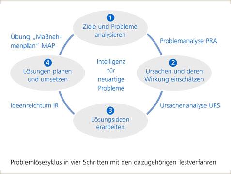 Die Profi Tests stellen wie eine Fallstudie das Szenario einer Firma dar und enthalten vier Einzelmodule, die jeweils eine Phase des Problemlösezyklus erfassen: 1. Ziele und Probleme analysieren, 2. Ursachen und deren Wirkung einschätzen, 3. Lösungsideen erarbeiten, 4. Lösungen planen und umsetzen.