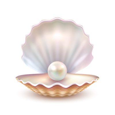Mithilfe einer gelungenen Personalauswahl die Perlen in einer Muschel finden.